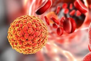 zika virus outbreaks in the world