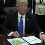 trump-meme 2